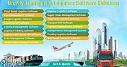 Transport and Logistics Software Development Company