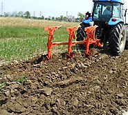5 Ways To Increase The Soil Quality