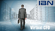 Virtual CFO Services by IBN Technologies Limited for Smart Entrepreneurs