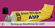 Setting up WordPress for AMP: Accelerated Mobile Pages • Yoast