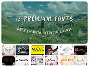 12 Premium Fonts for only $24 with extended license