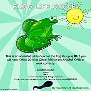 Frog Life Cycle Animated PowerPoint - TeachEzy