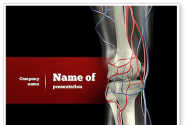 Knee PowerPoint Template