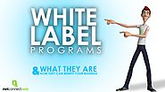 WHITE LABEL PROGRAM PROGRAMS - What they are - How they can benefit your Business
