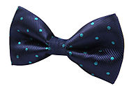 Polka Dot Bow Ties - Everlasting Men's Favorite Accessories Of All Time