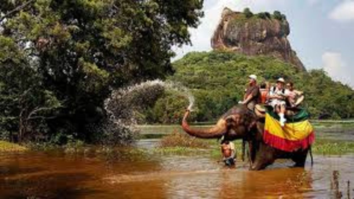 Headline for Top Adventure Tours in Sri Lanka – Land of a Thousand Lures