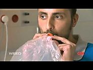 Marijuana Cannabis Research Studies Full HD Documentary