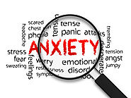 Website at http://foodmatters.tv/articles-1/5-herbs-to-calm-anxiety-without-being-drowsy