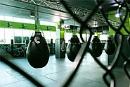 Fighters Fitness