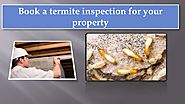 Book a Termite Inspection For Your Property