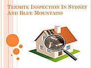 Termite Inspection in Sydney And Blue Mountains