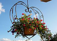 Don't forget about hanging baskets, young trees, shrubs, and newly laid turf