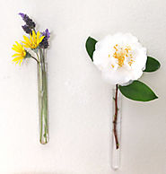 DIY: Easy Hanging Wall Vases - A Piece Of Rainbow