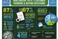 B2B Content Marketing Report - Need To Focus On The Basics