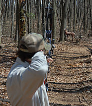 How To Improve Bow Shooting Accuracy