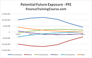 Potential Future Exposure. Calculating PFE for an IRS