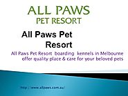 All Paws - Cat Boarding & Dog Kennels in Melbourne