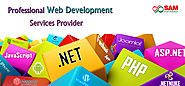 Website at http://blog.samwebsolution.com/2016/01/22/why-choose-web-designing-company-instead-of-freelancers/