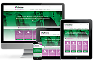 Employee Benefits Website Design | Lifetime Benefit Solutions (2015)