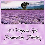 Ten Ways To Get Prepared For Planting