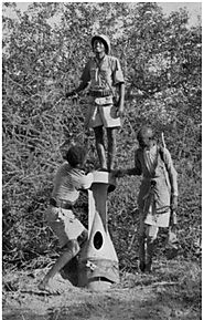 """Between Bombs and Good Intentions: The Red Cross and the Italo-Ethiopian War, 1935-1936"" by Rainier Baudendistel"