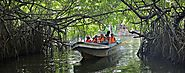 Explore Madu River by Boat
