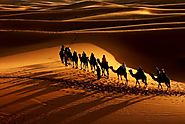 Enjoy a Desert Crossing
