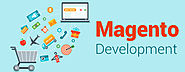 Best Magento Development Agency in Fremont, California
