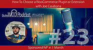 The WP eCommerce Show - Everything WordPress and eCommerce | How To Choose a WooCommerce Plugin or Extension with Joe Casabona - Do the Woo Podcast