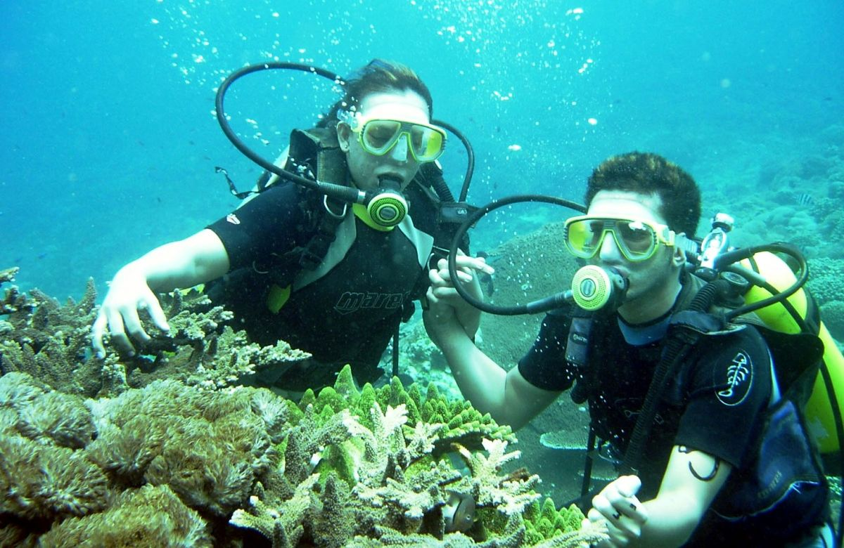 Headline for Diving Places in Bali – Underwater Havens