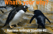 Business Strategy Question #03: What is your big WHY?