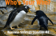 Business Strategy Question #04: Who is your WHO?