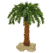 Sterling 3210-15c 15-Inch Pre-Lit Palm Tree Clear Lights
