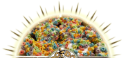 Voodoo Doughnut - The Magic is in the Hole!!!