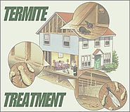 Best Termite Treatment in Brisbane – RA Dibbs
