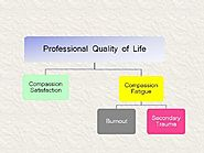 Professional Quality of Life Elements Theory and Measurement