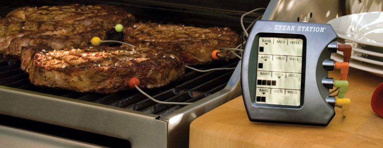 Headline for Top-Rated Meat Thermometers - Best Digital Meat Thermometers