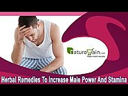 Herbal Remedies To Increase Male Power And Stamina In An Effective Manner