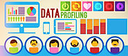 Why Malaysian B2B Companies need Data Profiling