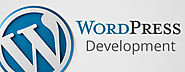 Tips on mastering WordPress development skills
