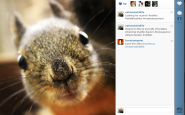 If Wildlife Took Selfies...A New Series on Instagram