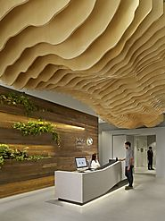 The Nature Conservancy – San Francisco Offices