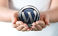 The Mystery Behind WordPress' Popularity