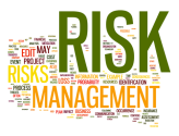 Few Steps and Reviews on Risk Management Planning