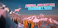 Animal Adventure: Downhill Rush - Google Play promo codes
