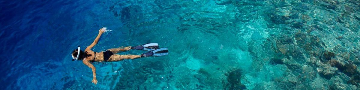 Headline for Top Underwater Activities in Maldives – Rediscover the World under the Sea