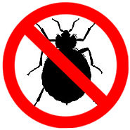 Bed Bugs Mississauga