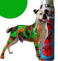 Pet Paint - White Elephant Gifts