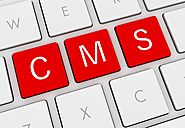 Content Management System Development In Singapore