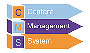 Content Management System Developer in Singapore